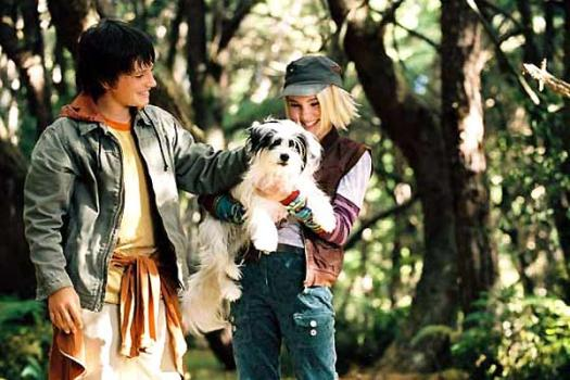 What Do You Know About Bridge To Terabithia Movie?