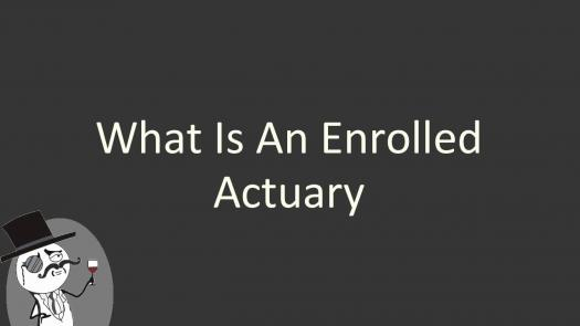 Enrolled Actuary Exam Prep