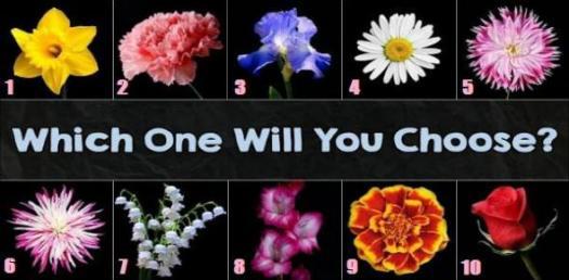 Interesting Quiz On Favorite Flowers? Quiz