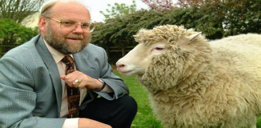Dolly The Sheep Trivia Quiz