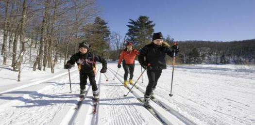 A Trivia Quiz About Cross Country Skiing