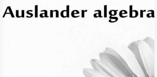 Auslander Algebra Trivia Quiz