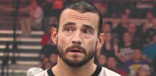 Are You A Big Fan of CM Punk?