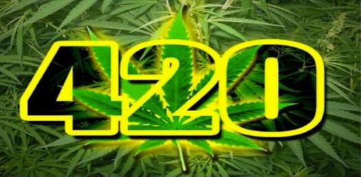 The Significance Of 420 Day! Quiz