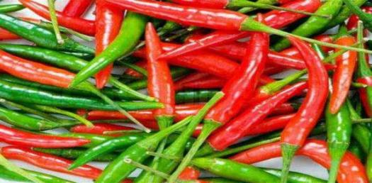 Spicy Facts About Chili! Trivia Quiz