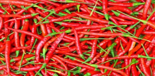 Types Of Chili! Trivia Facts Quiz