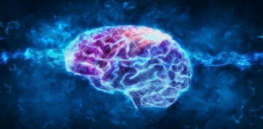 Child Brain Development! Trivia Questions Quiz