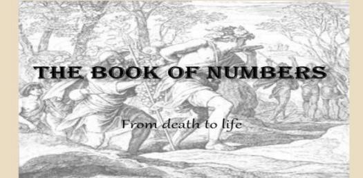 A Trivia Quiz On Book Of Numbers