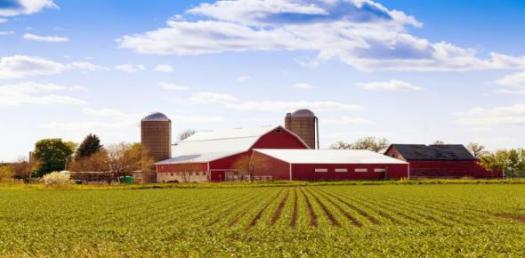 Types Of Farming! Trivia Facts Quiz