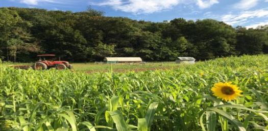 Farming Vocabulary Terms Test! Trivia Quiz