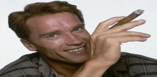 Quiz: Facts You Didnt Know About Arnold Schwarzenegger!