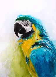 Which Parrot Is Best For You?