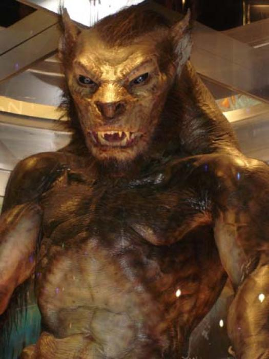 What Kind Of Lycan Are You?