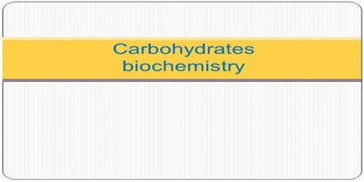 Biochemistry Carbohydrates Quiz