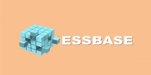 Essbase Software Trivia Quiz
