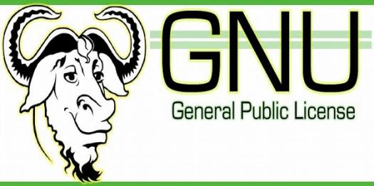 Quiz: What Do You Know About General Public License?