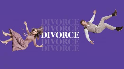 What Do You Know About The TV Series Divorce?