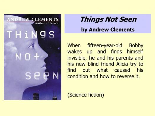 How Much Do You Know About Things Not Seen Novel?