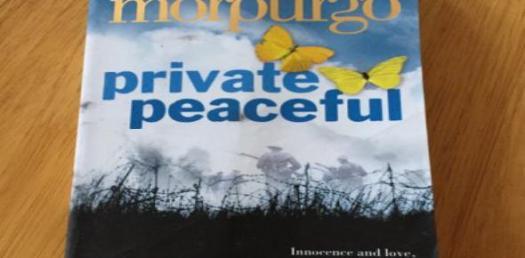 Private Peaceful Novel Quiz