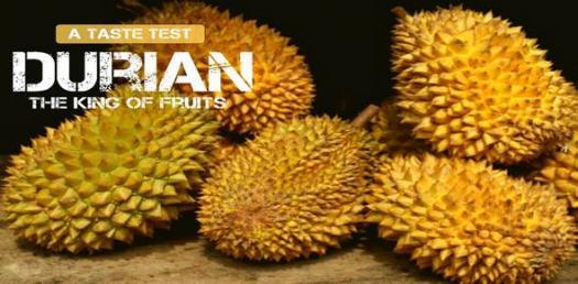 Durian Trivia Quiz