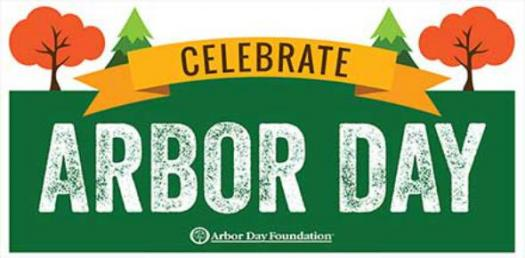 A Trivia Quiz About Arbor Day