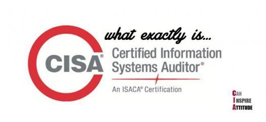 CISA Practice Test On Auditing! Trivia Quiz!
