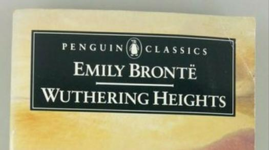 Do You Know About Wuthering Height Characters? Trivia Quiz