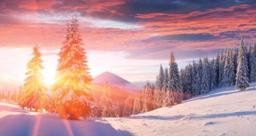 Trivia Quiz On The Longest Night Winter Solstice