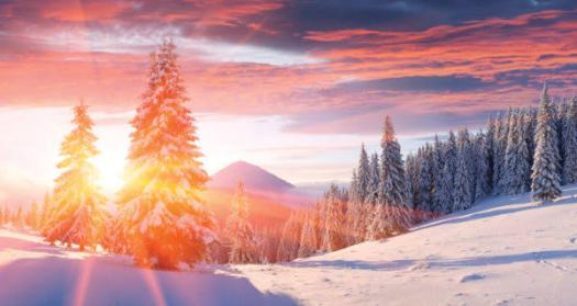 Quiz: Test Your Knowledge On Winter Solstice Questions