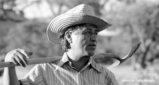 Trivia Quiz : How Well Do You Know About Cesar Chavez?
