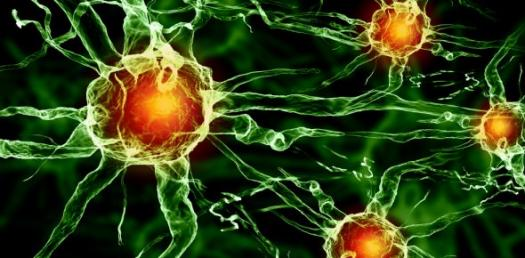 Cell Energy Quiz