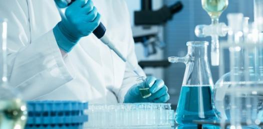 Microbiology Lab Quiz