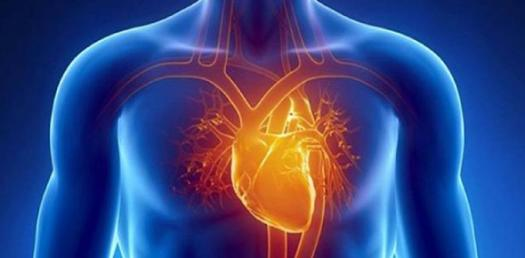 What Do You Know About Cardiac Drip? Trivia Quiz