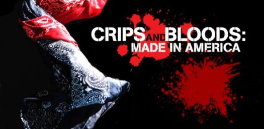 Are You A Crip Or A Blood? - ProProfs Quiz