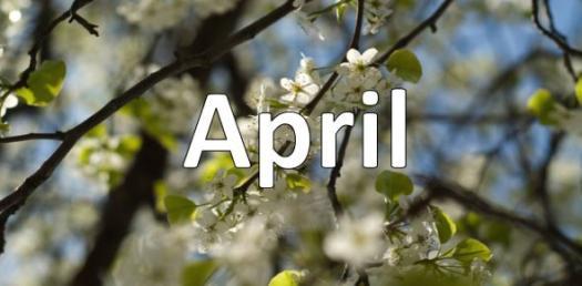 April Quiz