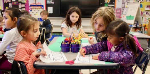 Kindergarten Living Things Quiz