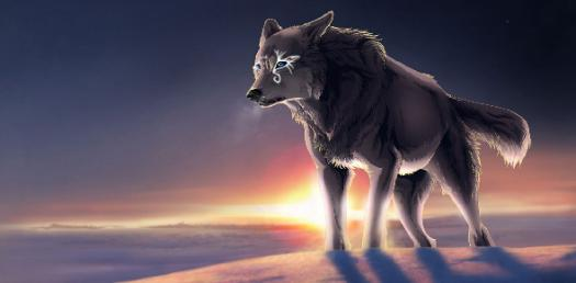 What Is Your Name And Look As An Anime Wolf? - ProProfs Quiz