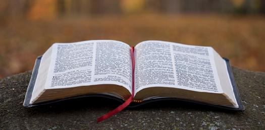 How well do you know about Bible Verses?