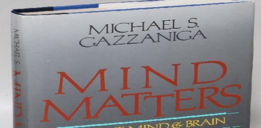 Brain Matters: Chapter 3