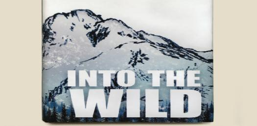 Into The Wild: Chapter 6-8 Quiz