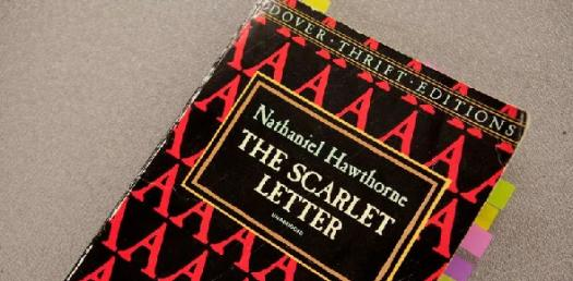 Scarlet Letter Chapters 3-5