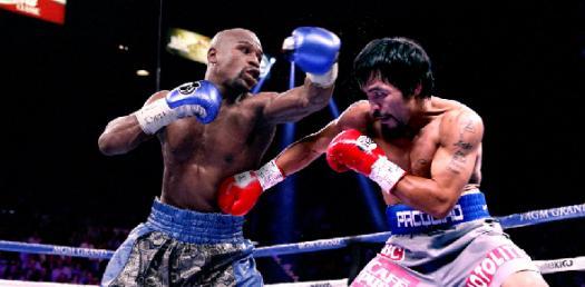 World Quiz Boxing Association