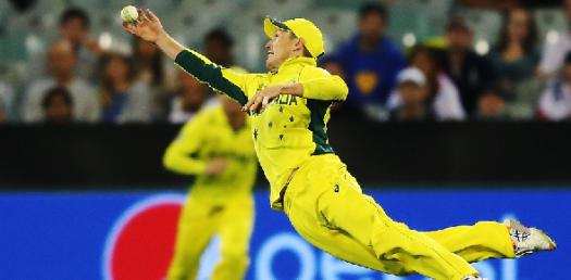 Cricket Rules And Vocabulary! Trivia Quiz