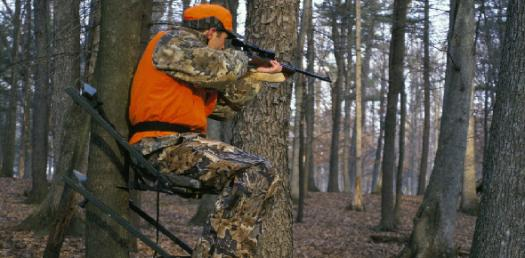 How Much Do You About Hunting