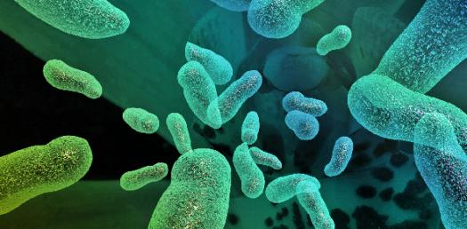 Quiz: Hardest Exam On Microbiology! Trivia