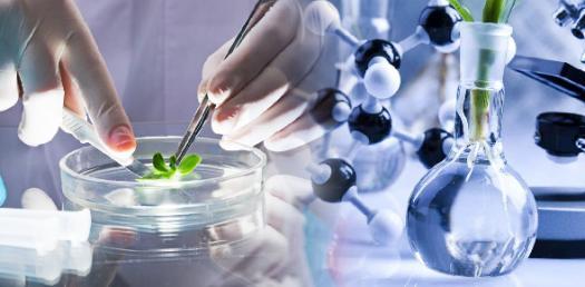 Test 5 Microbiology