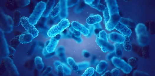 Take This Microbiology Test! Trivia Quiz