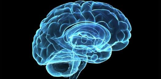 Brain Injury: Sharing The Road With Trucks Quiz