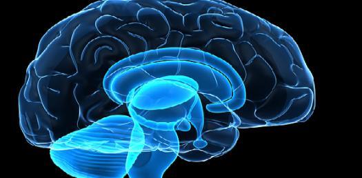 Brain Buster # 28