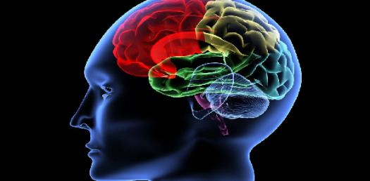 Simple Brain Test